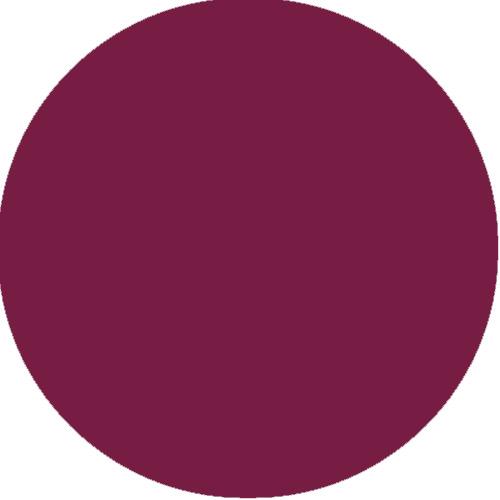 Quiz Guess That Color