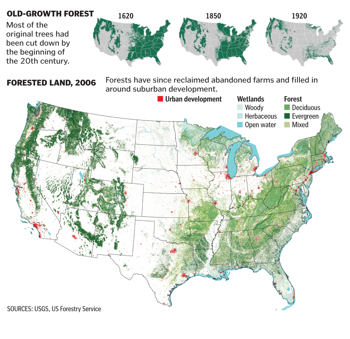 Forests return in the US
